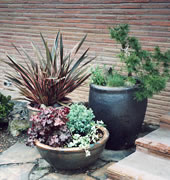 Beautiful container gardens to compliment the landscape