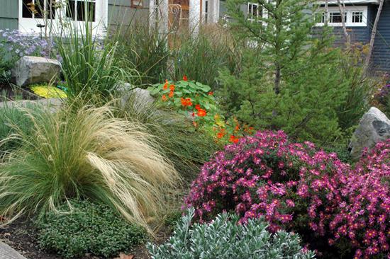 A Northeast Portland Family Garden